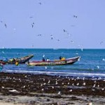 Gambia, A Passion for Pirogues, the Wolves of the Waves
