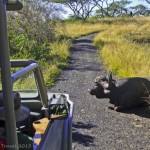 Postcards from South Africa – Favourite Destinations Series