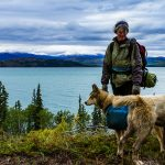 Sleeping with Sled Dogs in The Yukon