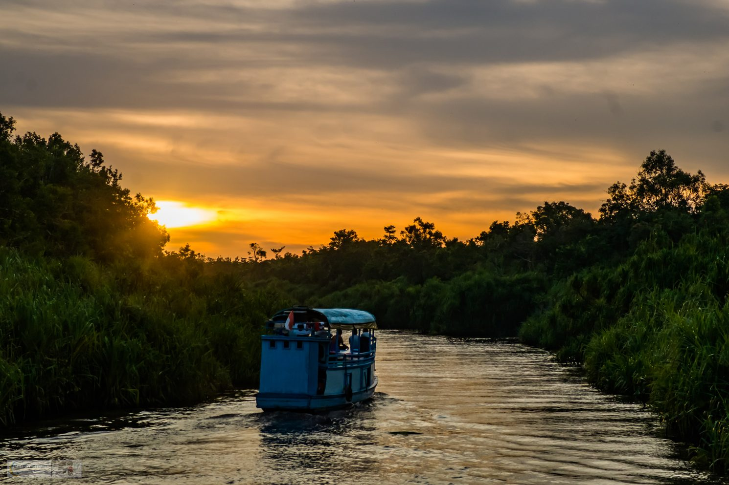 A sunset cruise on the Sekonyer River, Tanjung Puting National Park, Kalimantan in Borneo, the Republic of Indonesia on Mallory on Travel adventure travel, photography, travel iain-mallory_indo-1-9