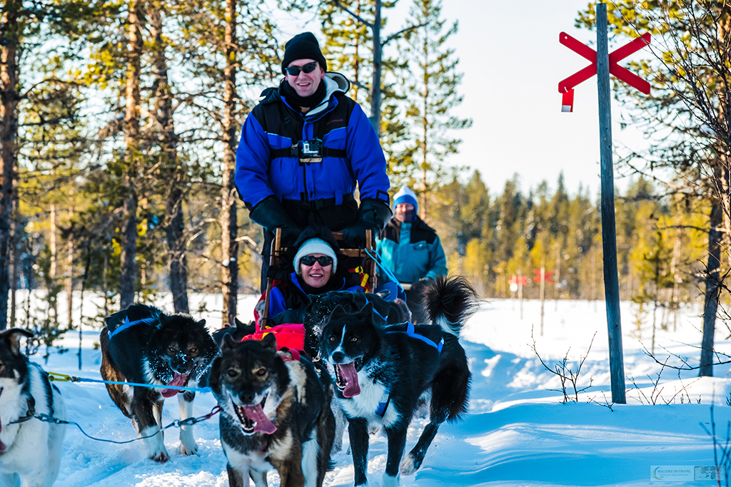 Dog sledding in the winter wonderland of Lappeasuando, dog sledding in Swedish Lapland, the far north of Sweden, within the Arctic Circle on Mallory on Travel adventure travel, photography, travel Iain Mallory_Lapland-1-35