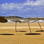 Postcard from giant beach mushrooms, Essaouira