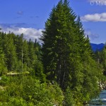 Riding the Rocky Mountaineer – The Romance of the Rails