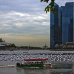 Singapore Quest for Good Service – A Surprise Package