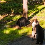 Meeting a Bear Whisperer in New Brunswick
