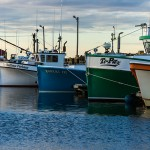Postcards from a Sun Painted Caraquet Harbour