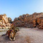 Jordan; Beyond Petra in Pictures