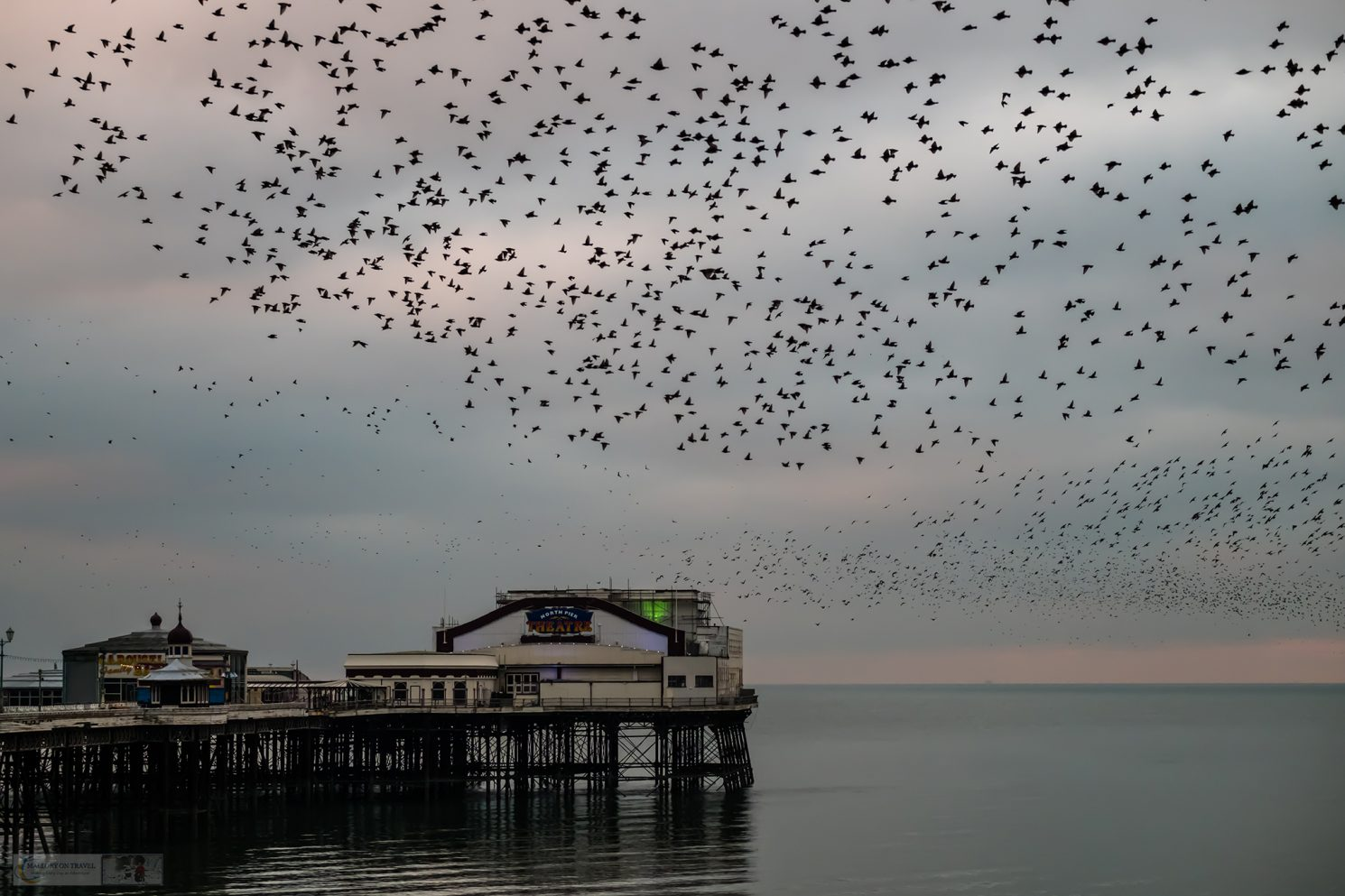 The North Pier murmuration, roosting starlings gather at dusk on the North Shore of Blackpool, on the Fylde Coast of Lancashire on Mallory on Travel adventure travel, photography, travel Iain Mallory_Murmuration 018
